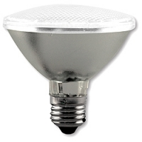 CC Vivid Par 30 LED light bulb