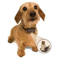 PetSafe MicroID Rescue Collar